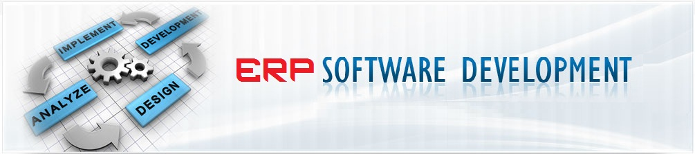 Best ERP Software Development Company in India